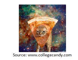 pizzacat2